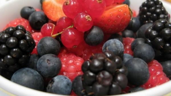 fructe padure1