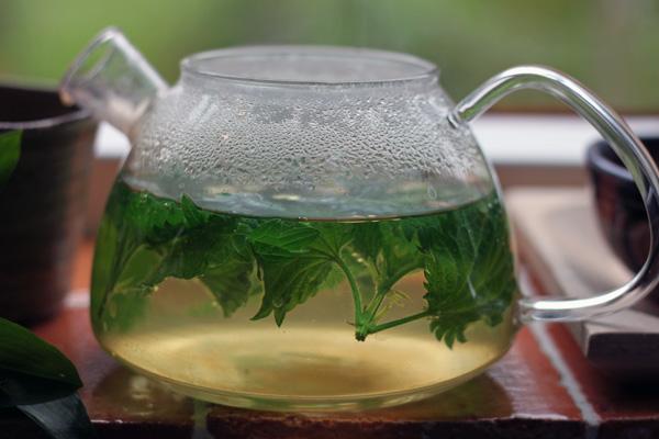 Ceai-din-urzica