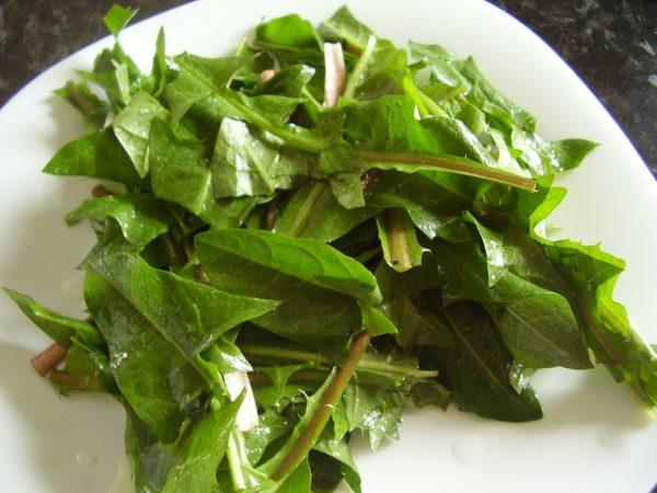 salata-de-papadie